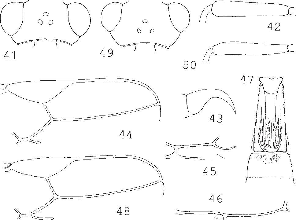 figure 41–50