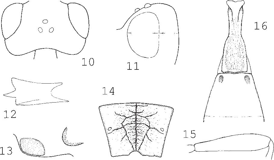 figure 10–16