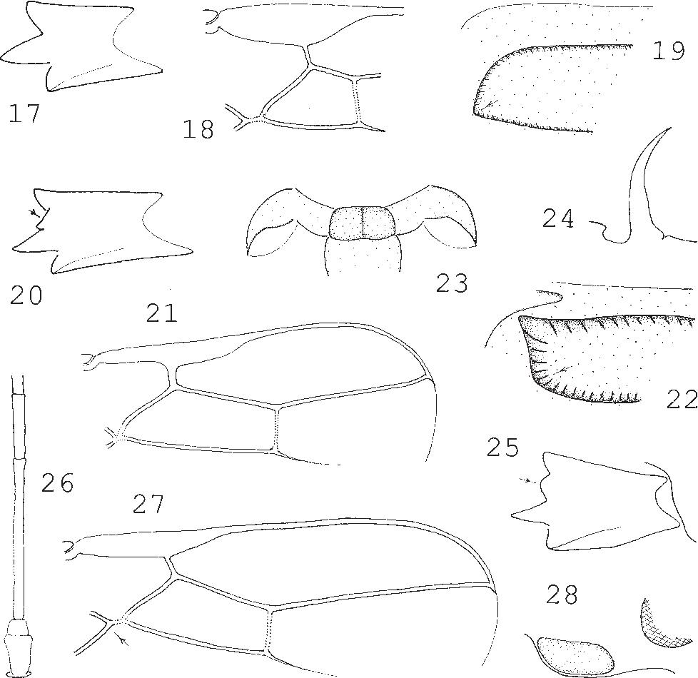 figure 17–28