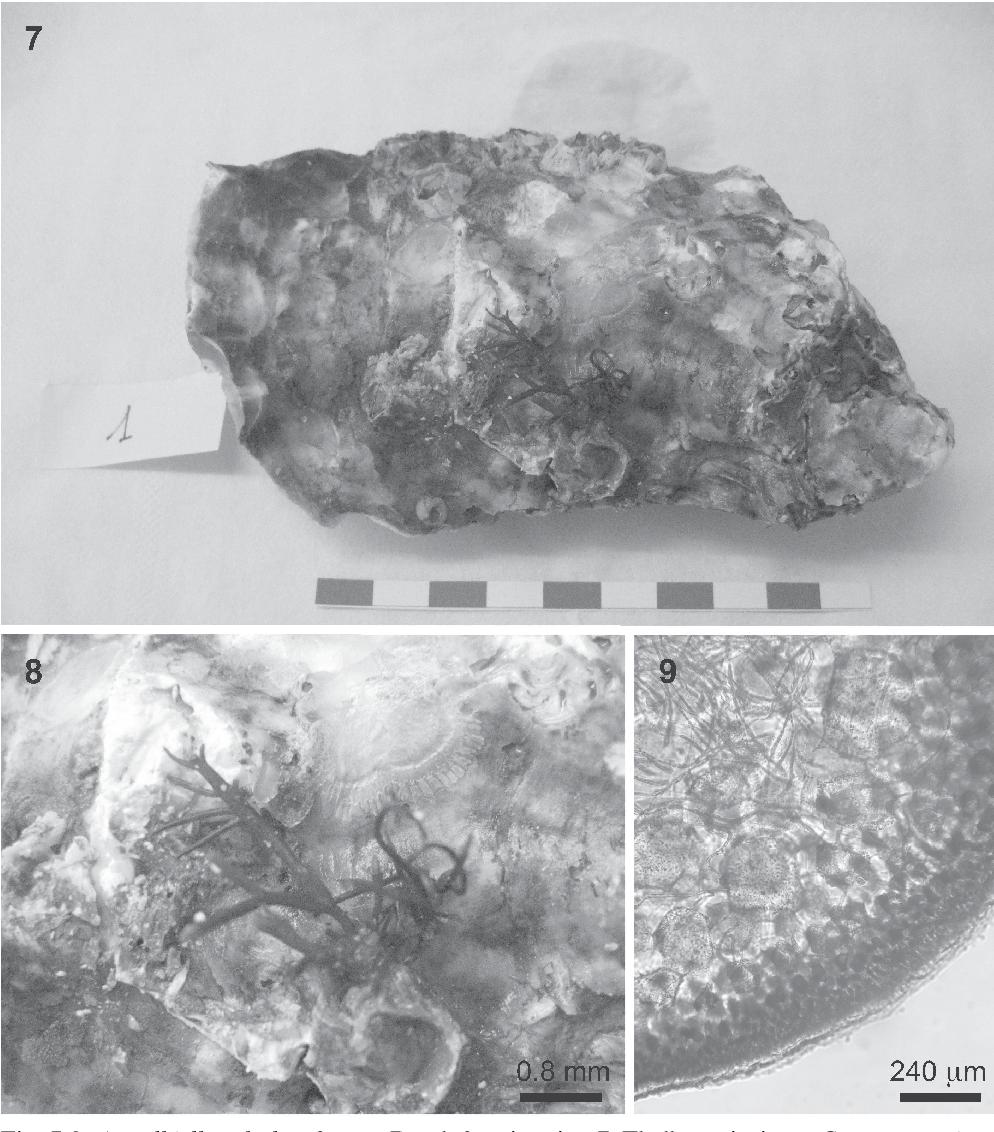 figure 7-9
