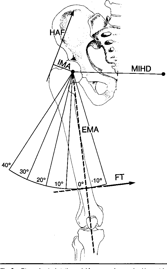 Figure 3 from Comparison of maximal isometric hip abductor