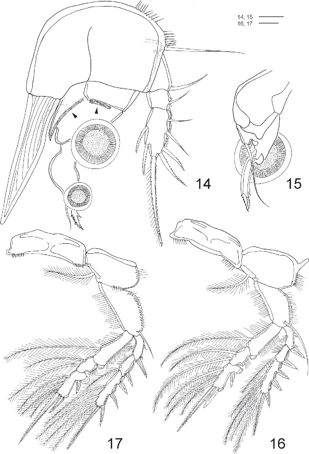 figure 14–17