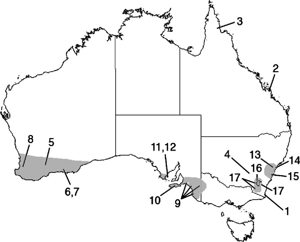 Figure 1 from Molecular phylogeography of Rosenberg's goanna