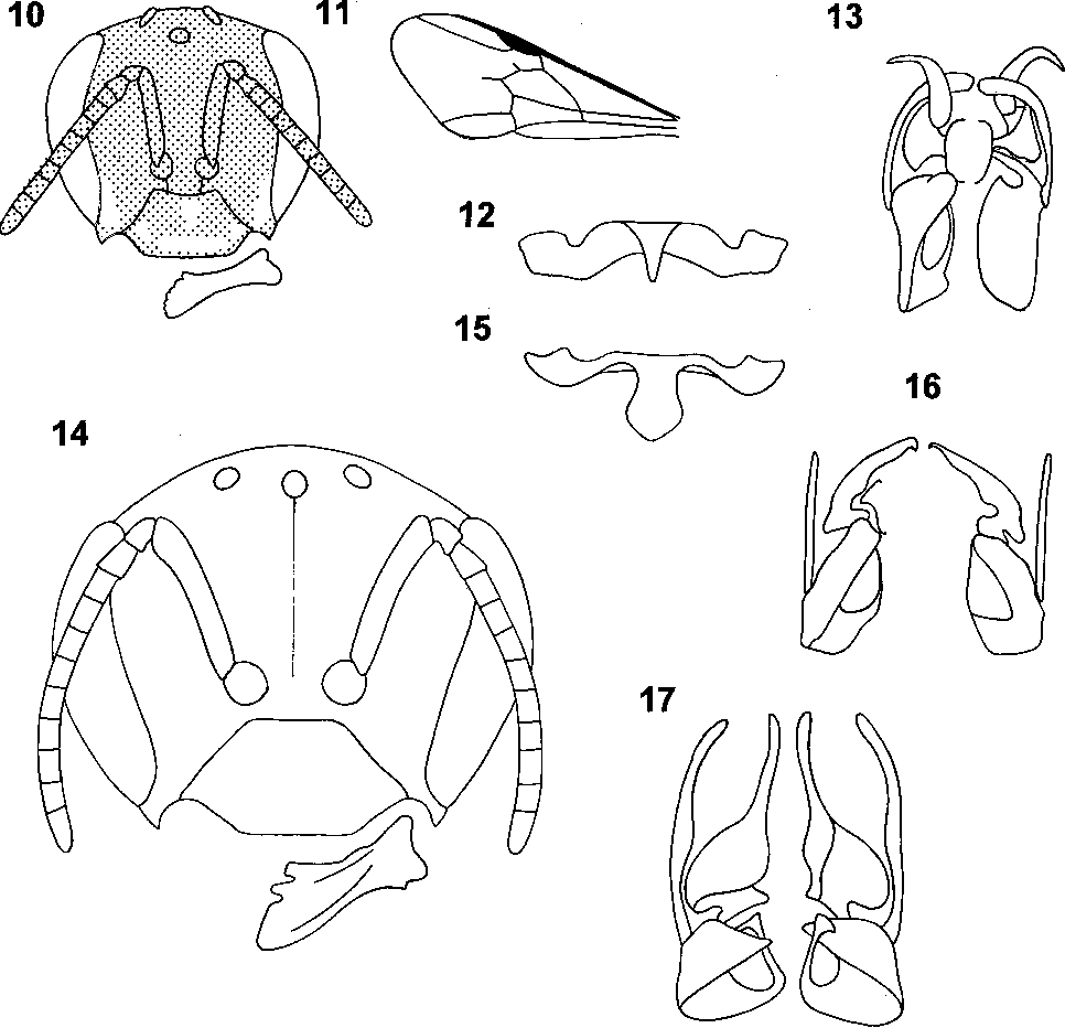 figure 10–17