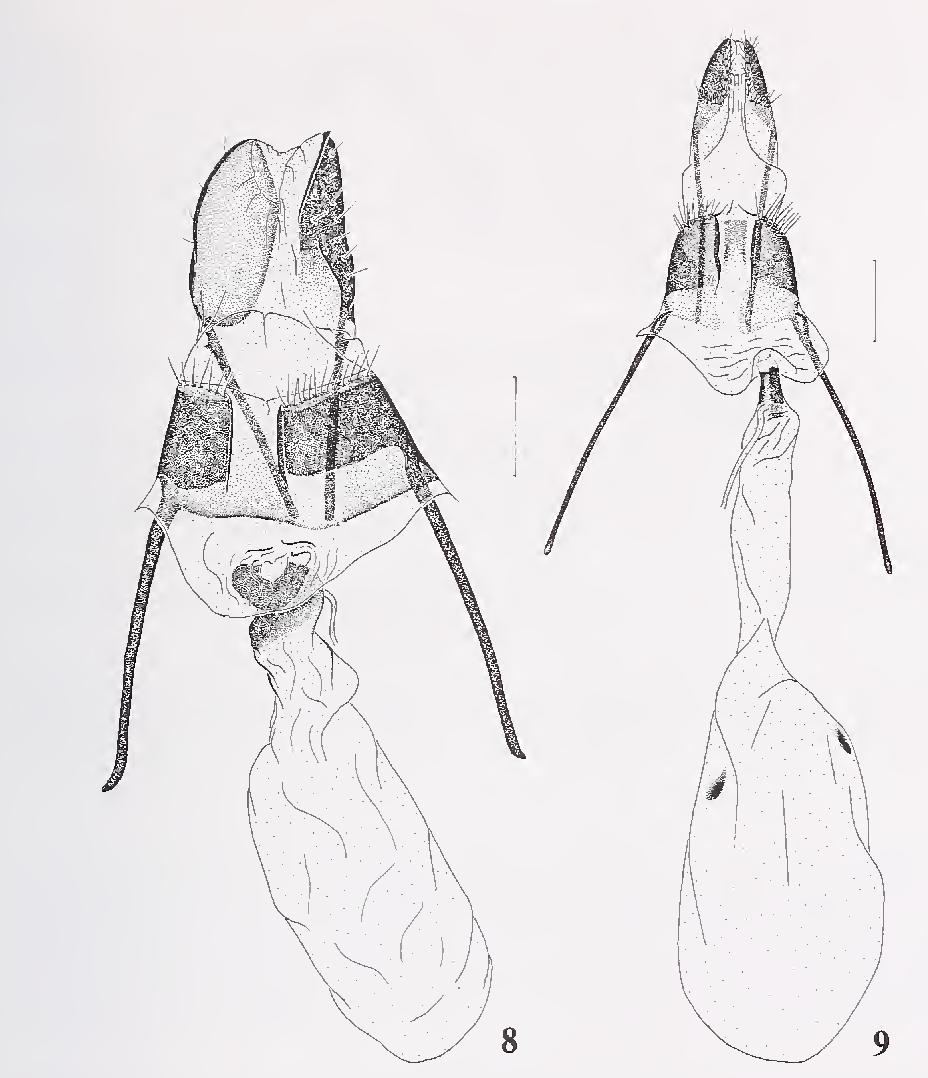 figure 8—9