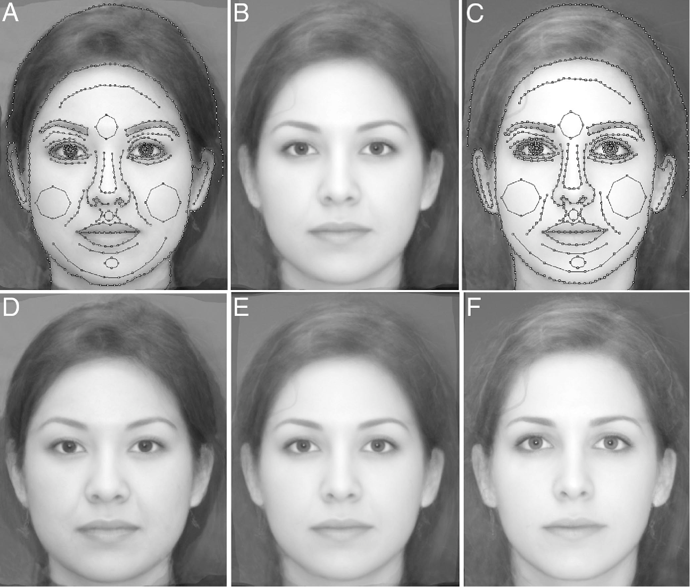 Figure 1 from Evolving attractive faces using morphing