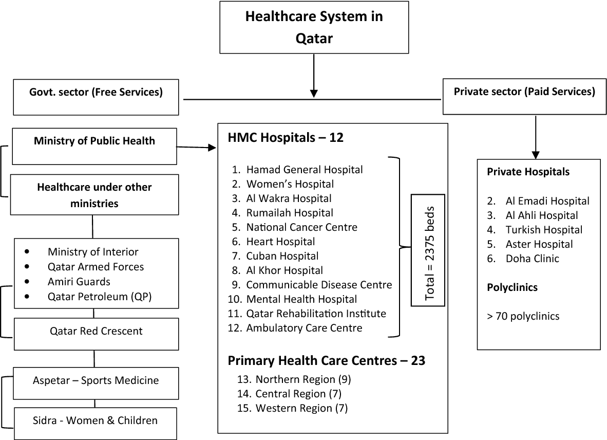 Figure 1 from Overview of pharmacovigilance practices at the