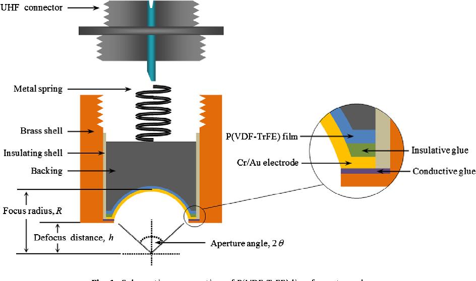 Figure 1 from Fabrication of broadband poly(vinylidene
