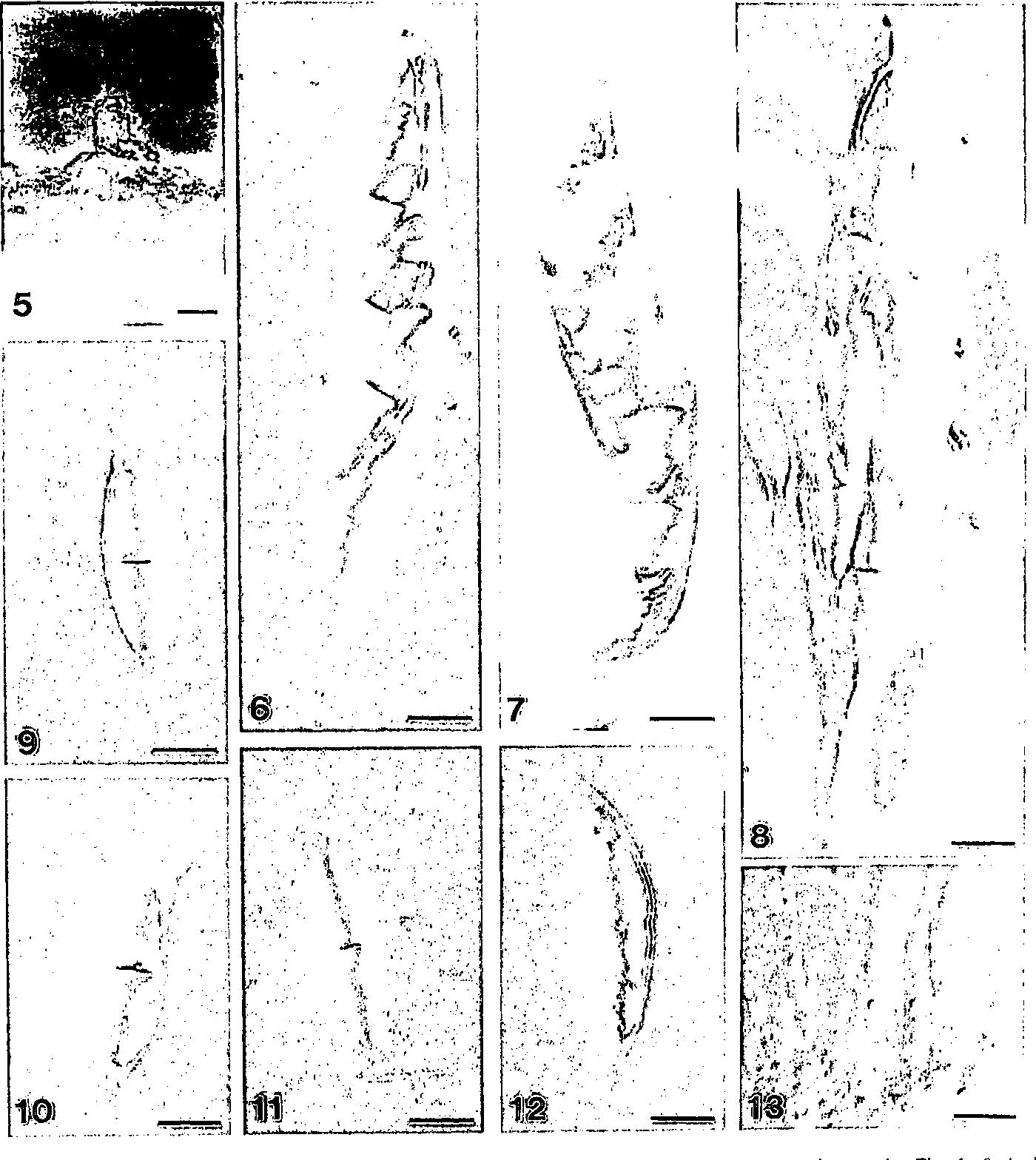 figure 5-13