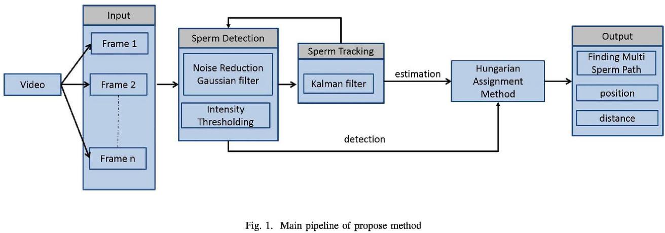Multi-sperm tracking using Hungarian Kalman Filter on low