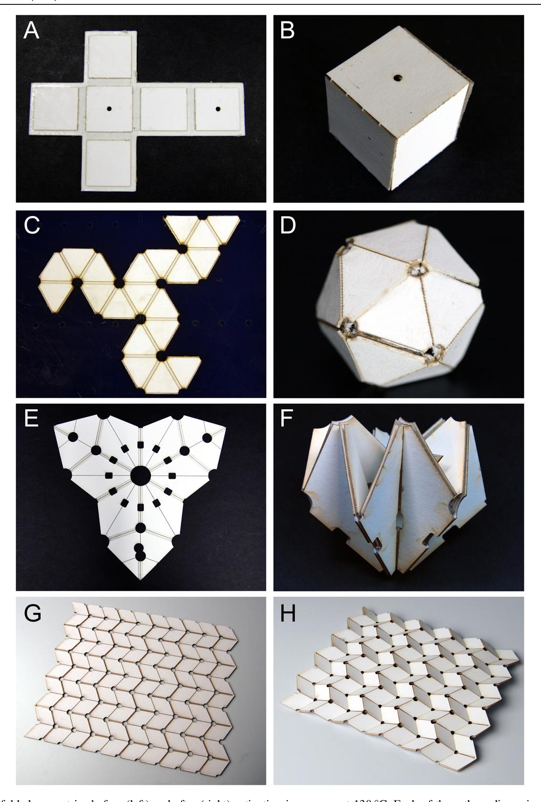 Female artist folding origami paper for making beautiful craft ... | 1644x1108