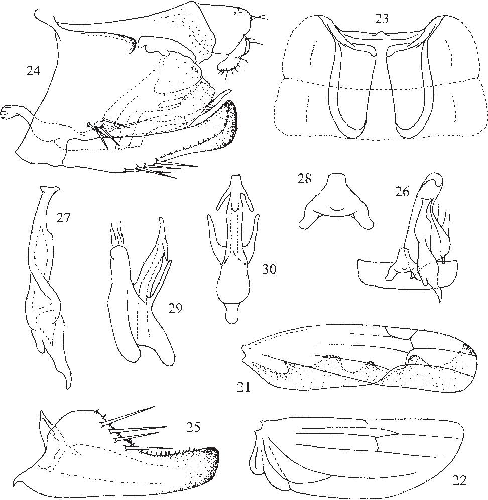 figure 21–30
