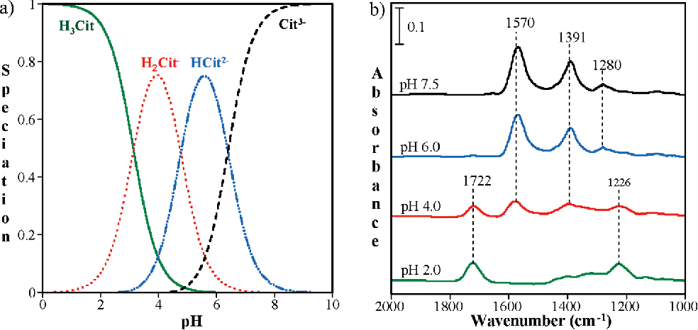 Figure 1 from Citric acid adsorption on TiO2 nanoparticles in aqueous  suspensions at acidic and circumneutral pH: surface coverage, surface  speciation, and its impact on nanoparticle-nanoparticle interactions. |  Semantic ScholarSemantic Scholar