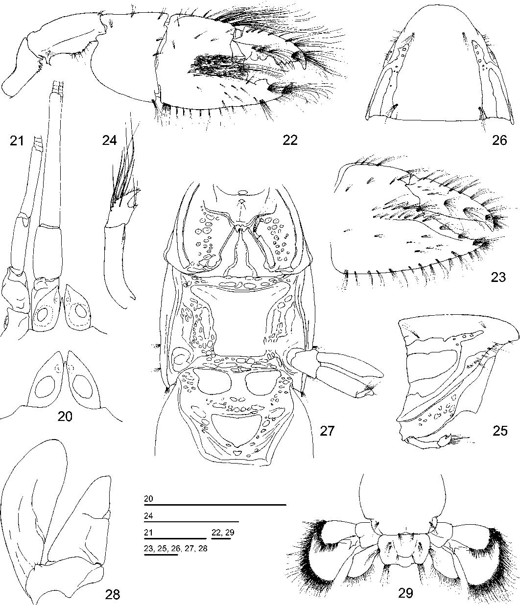 figure 20-29