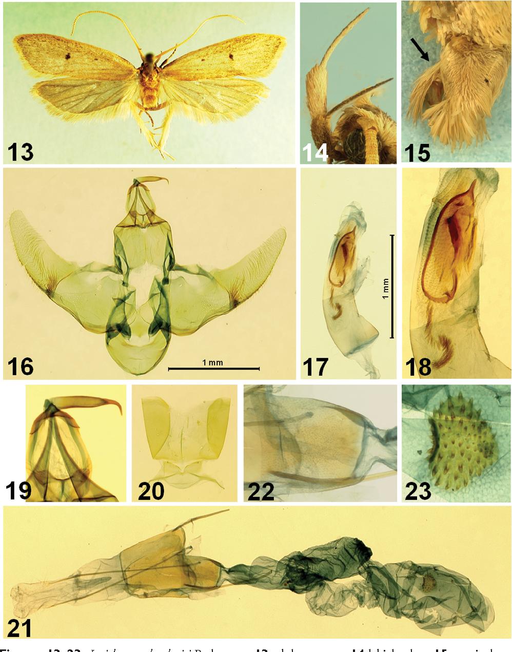 figure 13–23