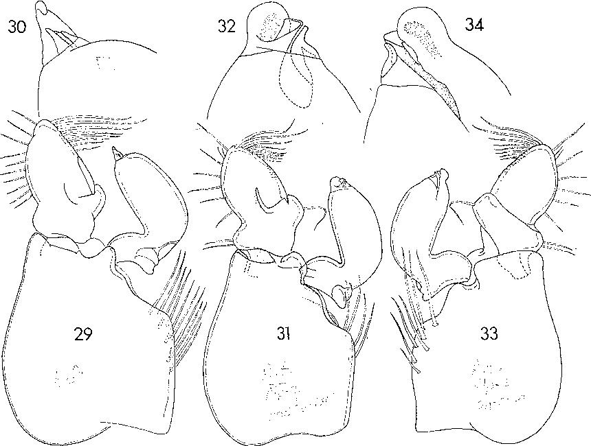 figure 18—20