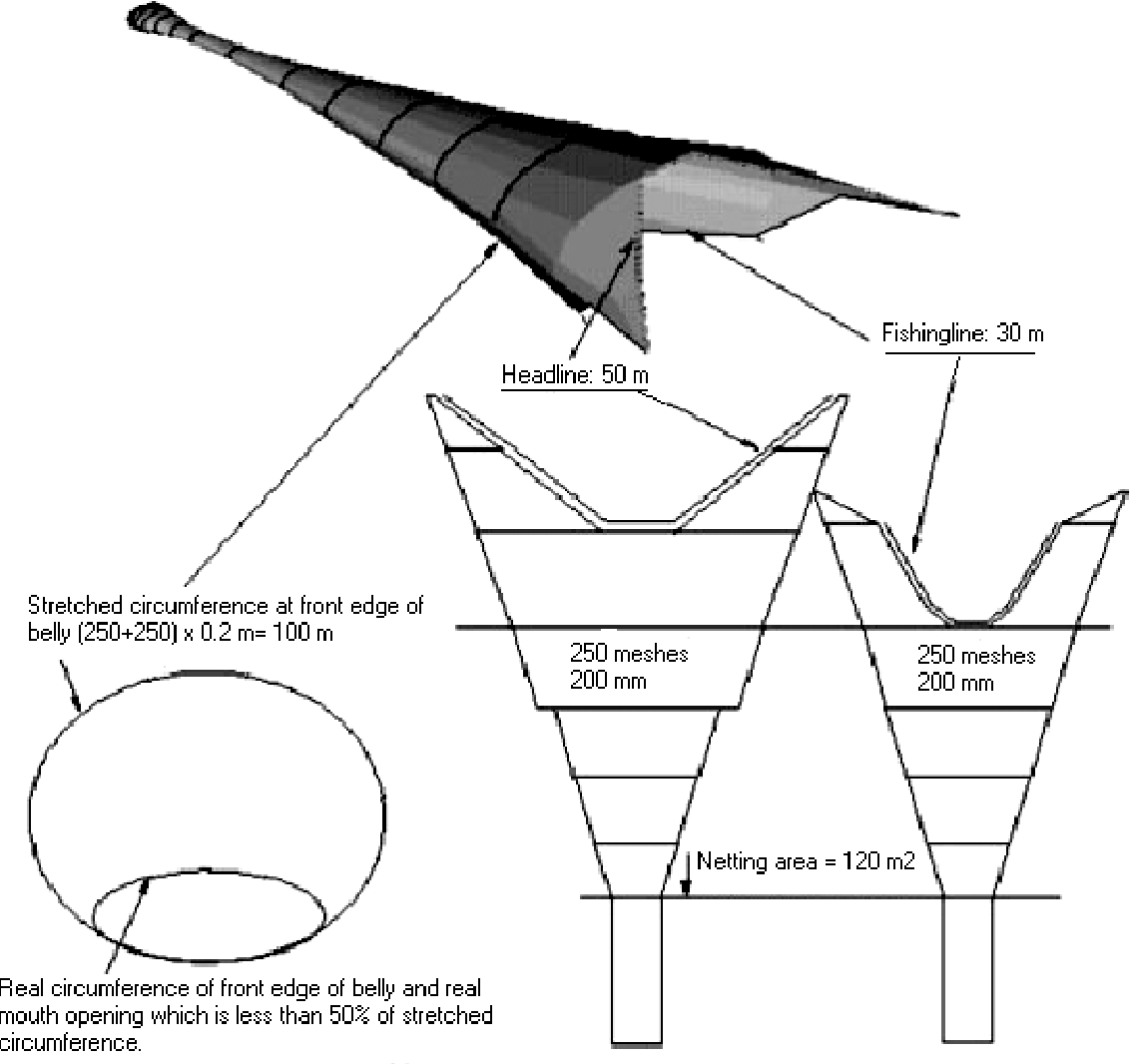 Figure 10 from SHRIMP TRAWL DESIGN IMPROVEMENTS SUGGESTED