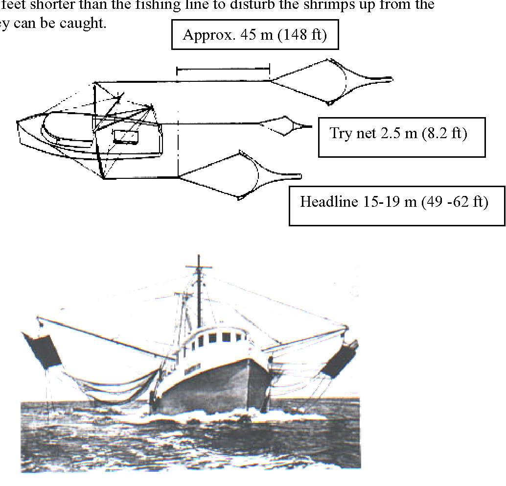 Figure 2 from SHRIMP TRAWL DESIGN IMPROVEMENTS SUGGESTED FOR