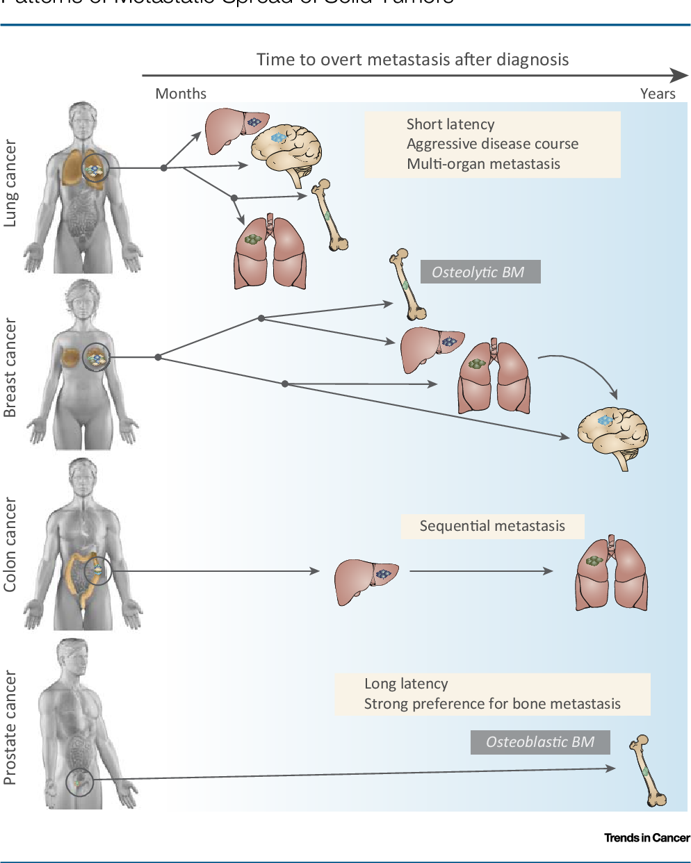 Figure 1 from Surviving at a Distance: Organ-Specific