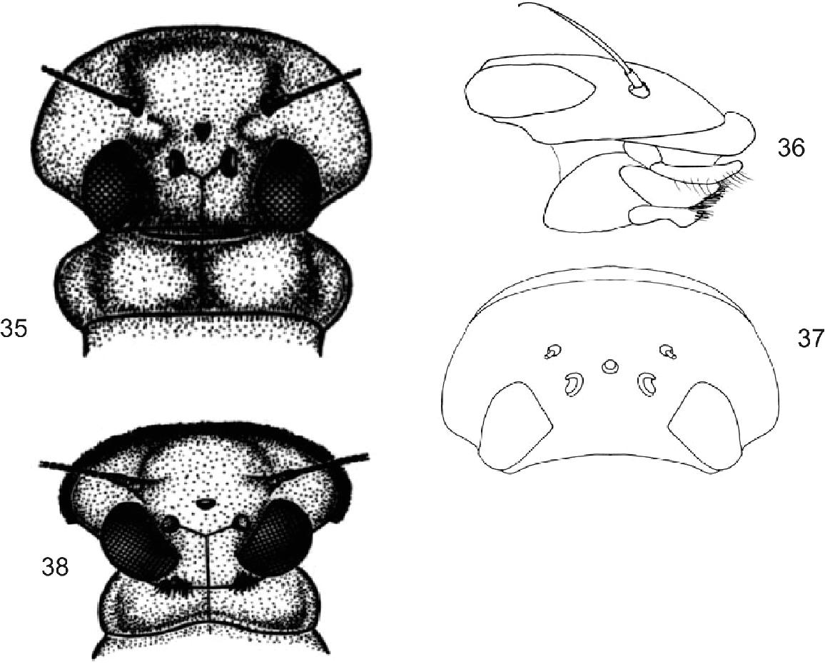 figure 35-38