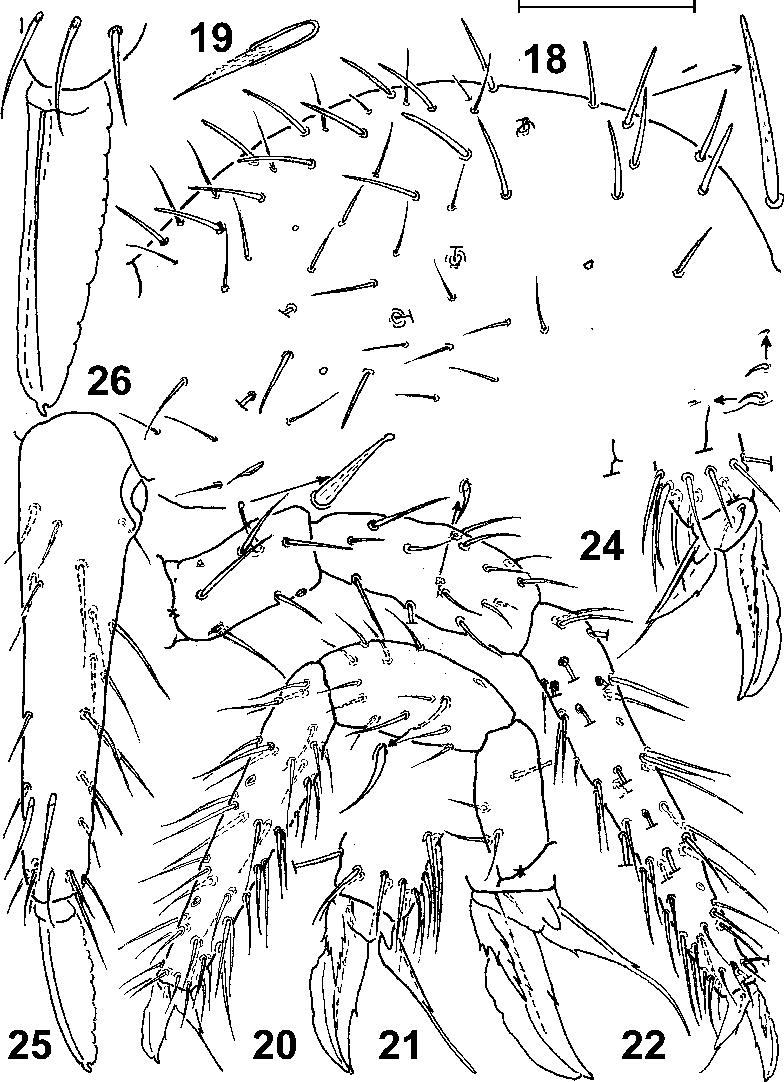 figure 18-26