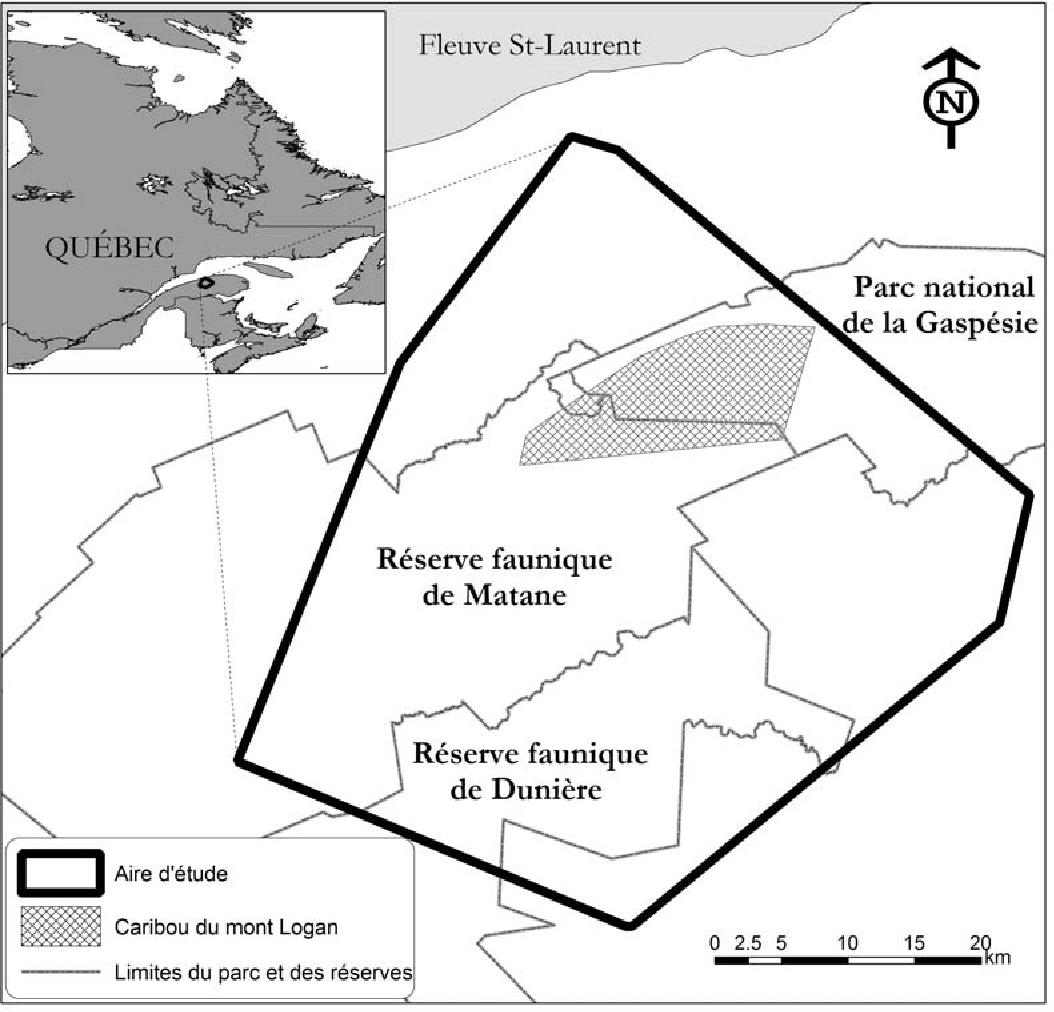 Figure 1 From Selection De L Habitat Par Le Coyote Canis Latrans Dans Le Contexte De La Conservation Du Caribou De La Gaspesie Semantic Scholar