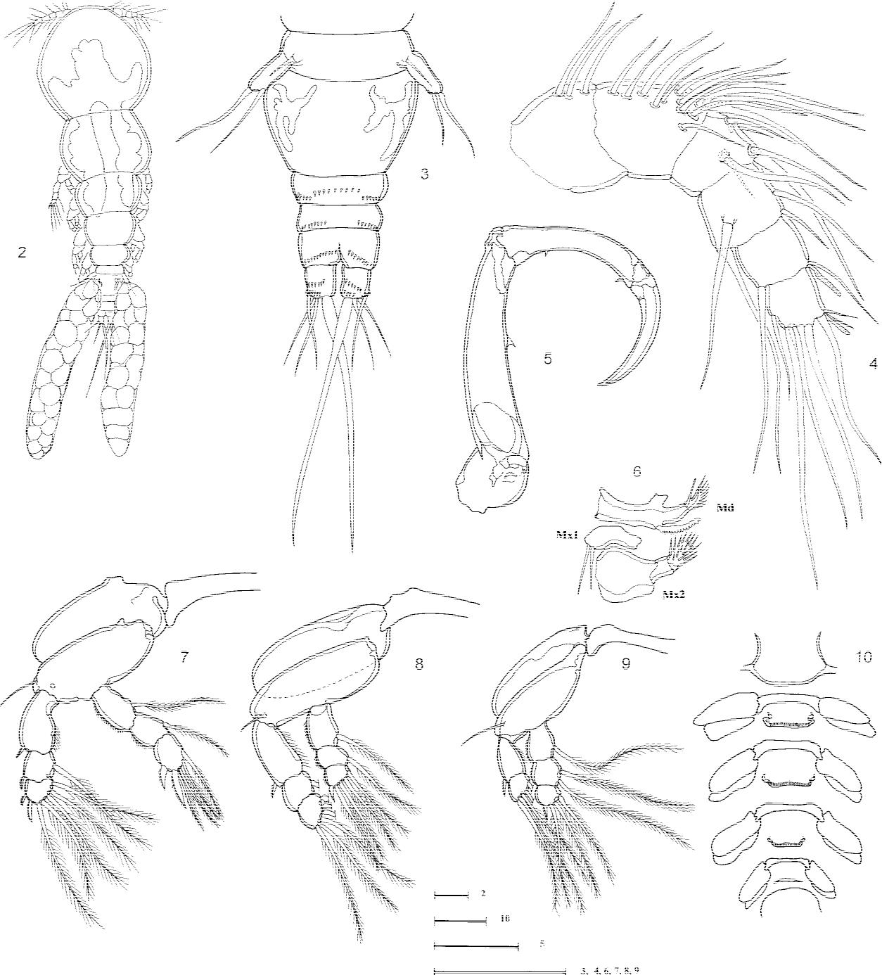 figure 2–10