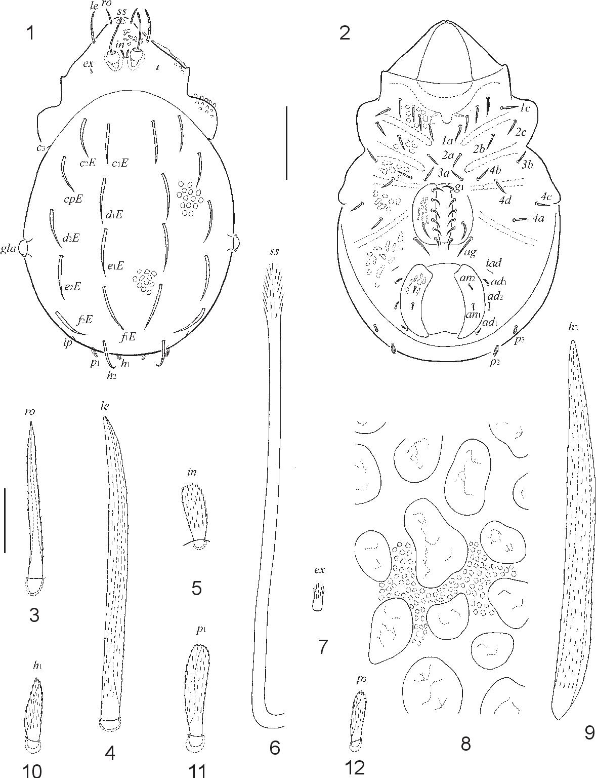 figure 1–12