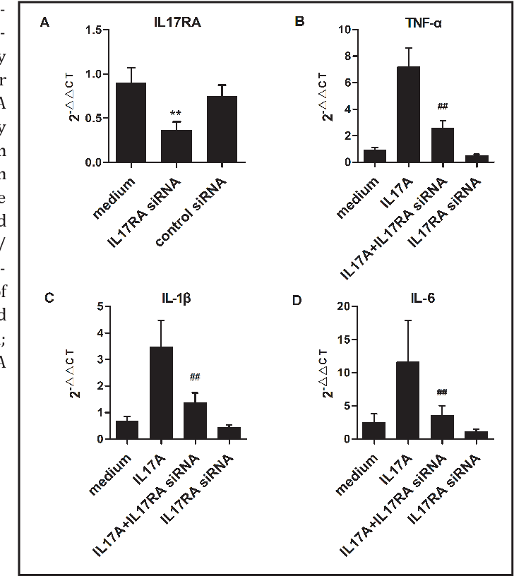 Figure 4 from IL-17 A Induces Pro-Inflammatory Cytokines