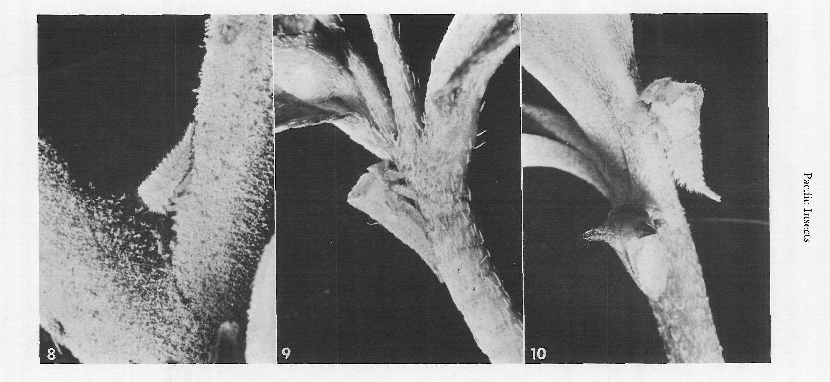 figure 8-10
