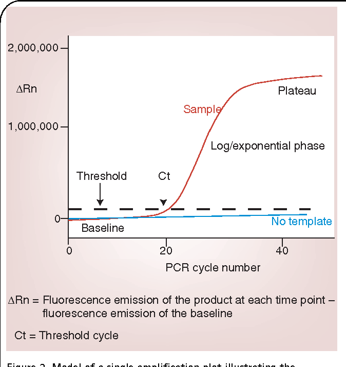 Basic principles of real-time quantitative PCR  - Semantic