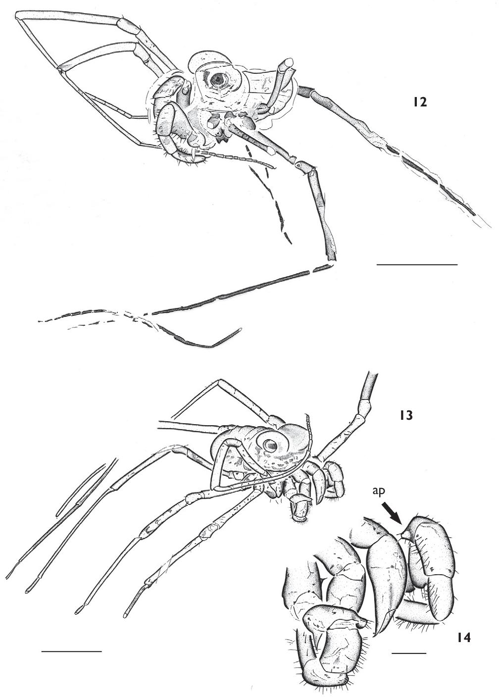 figure 12-14