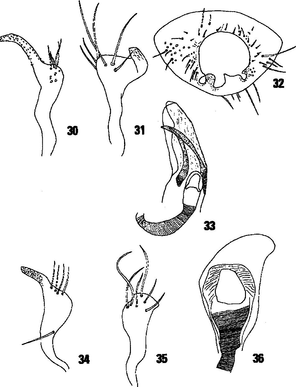figure 30-36