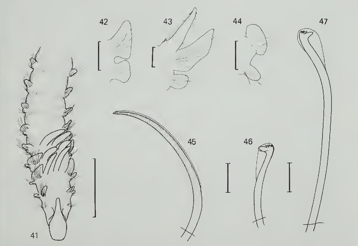 figure 41-47