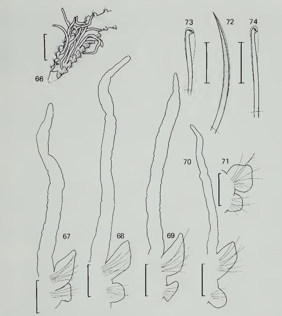 figure 66-74