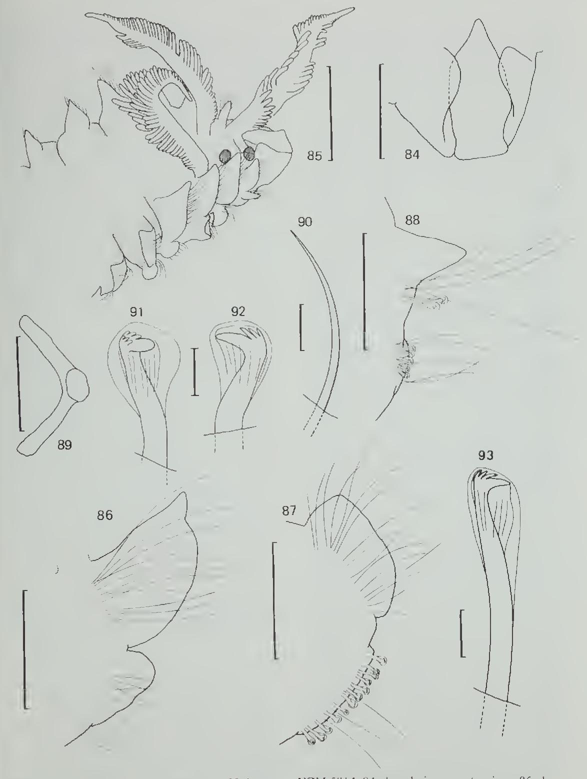 figure 84-93