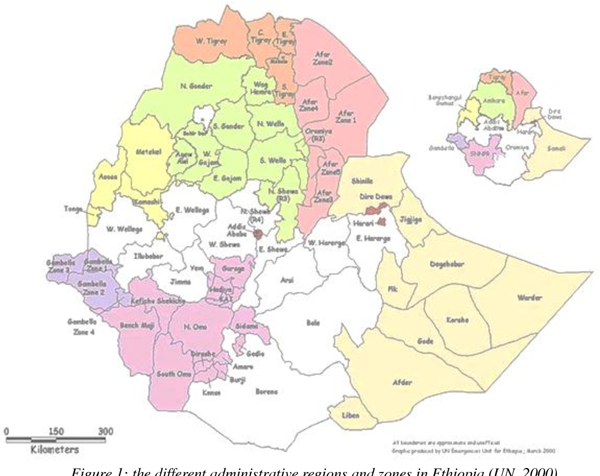 PDF] Animal welfare in Ethiopia: Transport to and handling