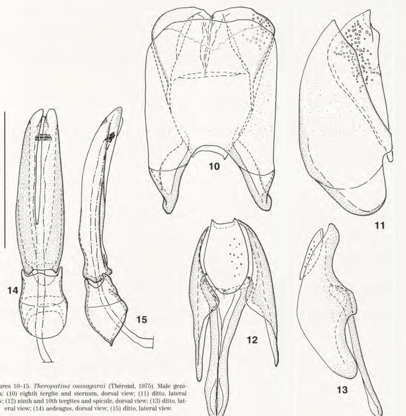 figure 10-15