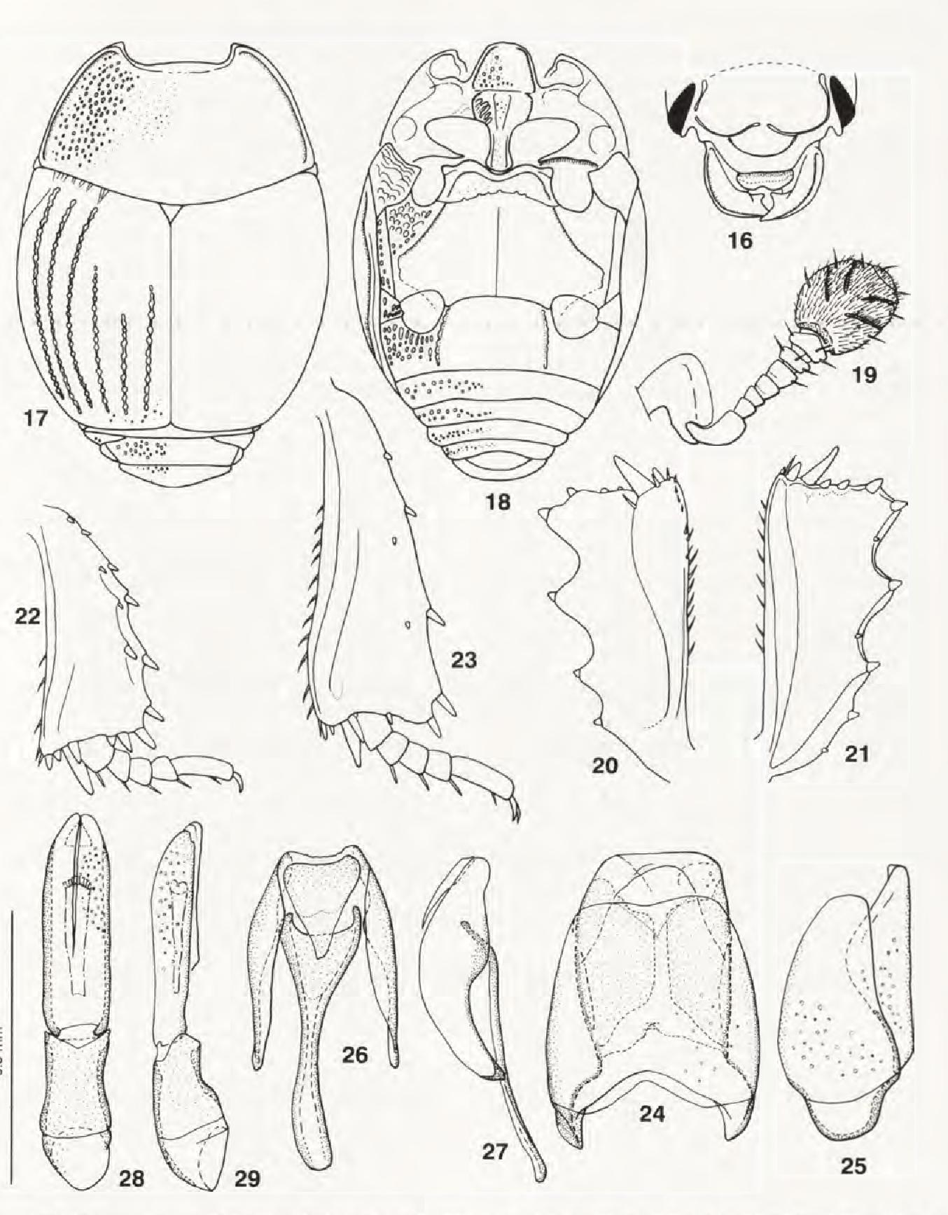 figure 16-29