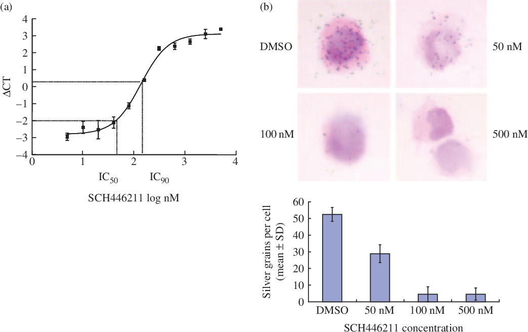 Figure 2 from In vitro antiviral activity of SCH 446211
