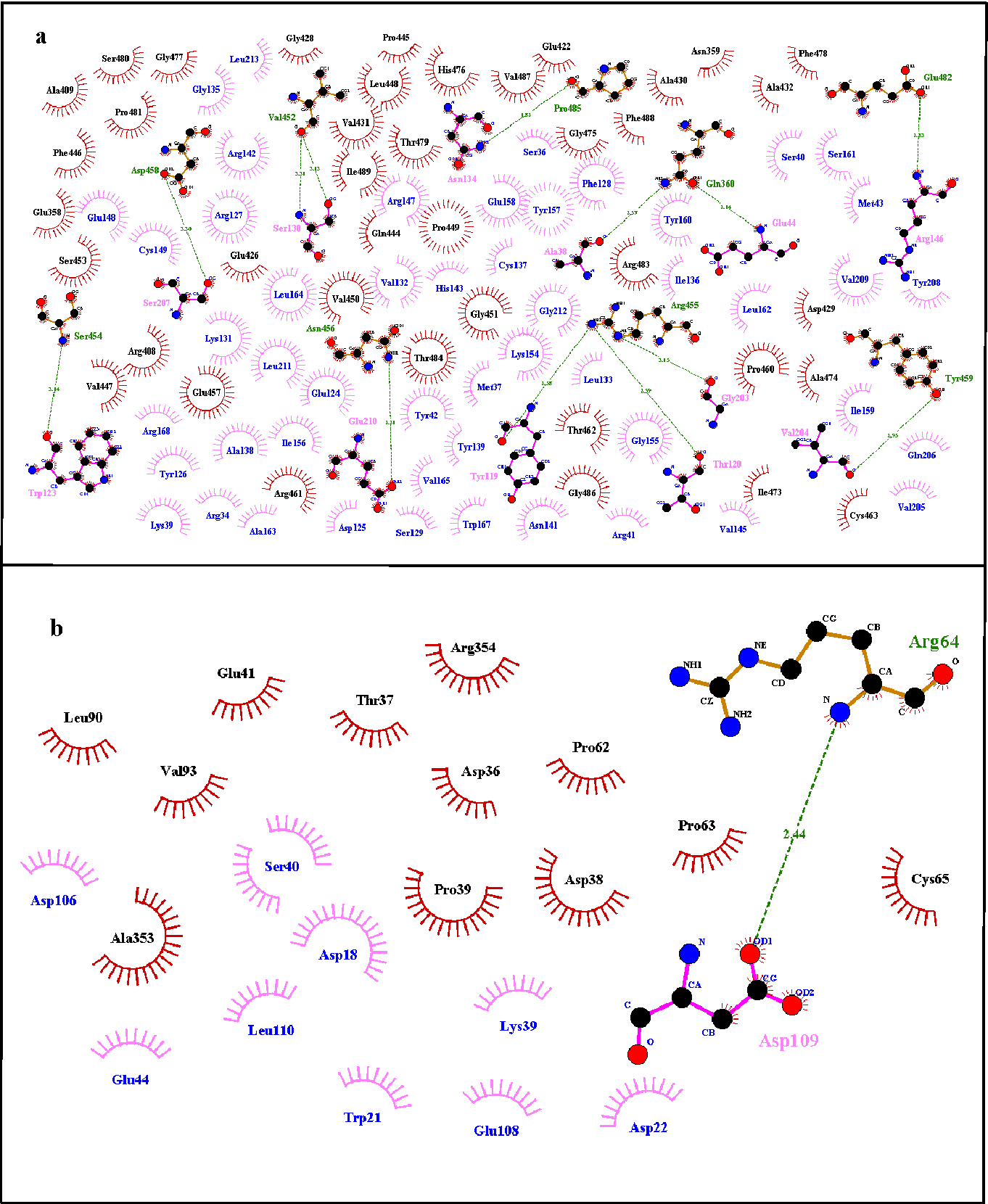 Figure 10 from Insight to FBXO31 Novel Mutation p Cys283Asn