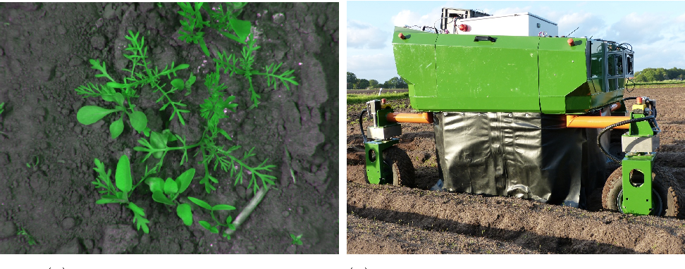 A Crop/Weed Field Image Dataset for the Evaluation of