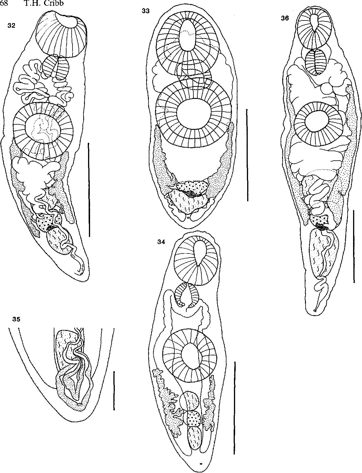 figure 32-36