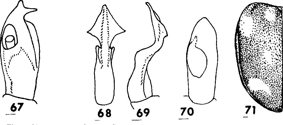 figure 67-71
