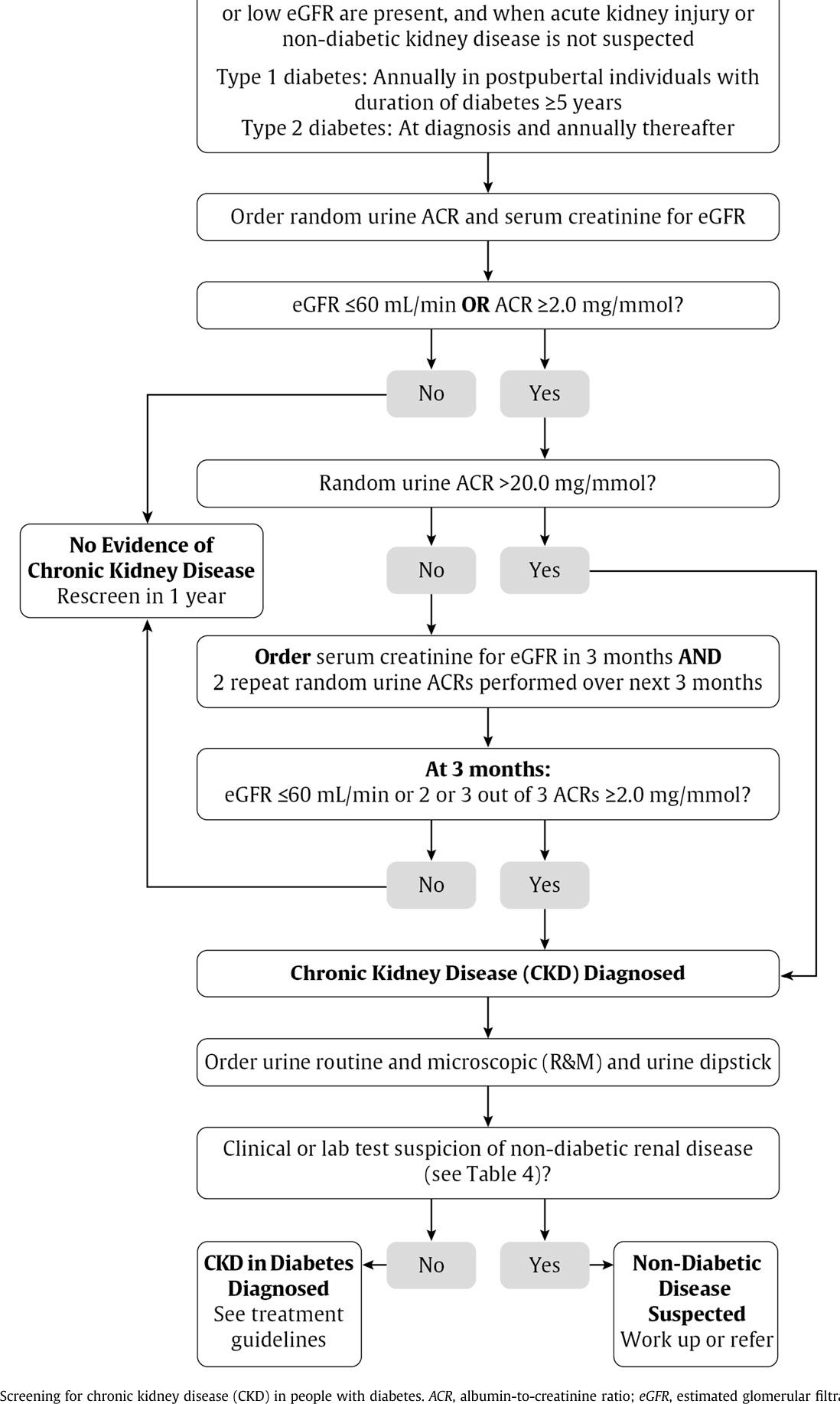 Figure 3 From Chronic Kidney Disease In Diabetes Semantic Scholar