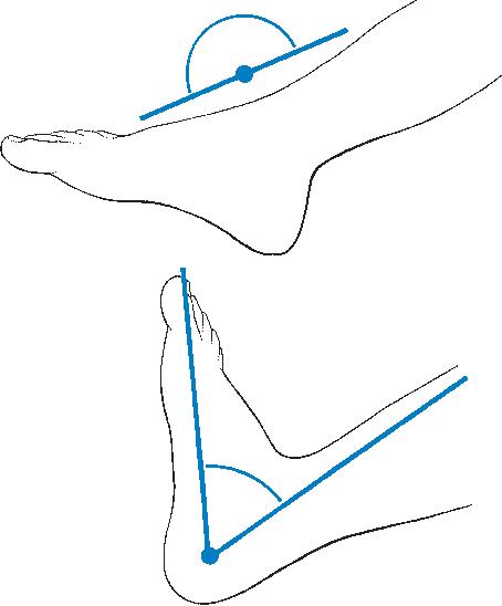figure 58.1