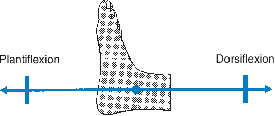 figure 58.2
