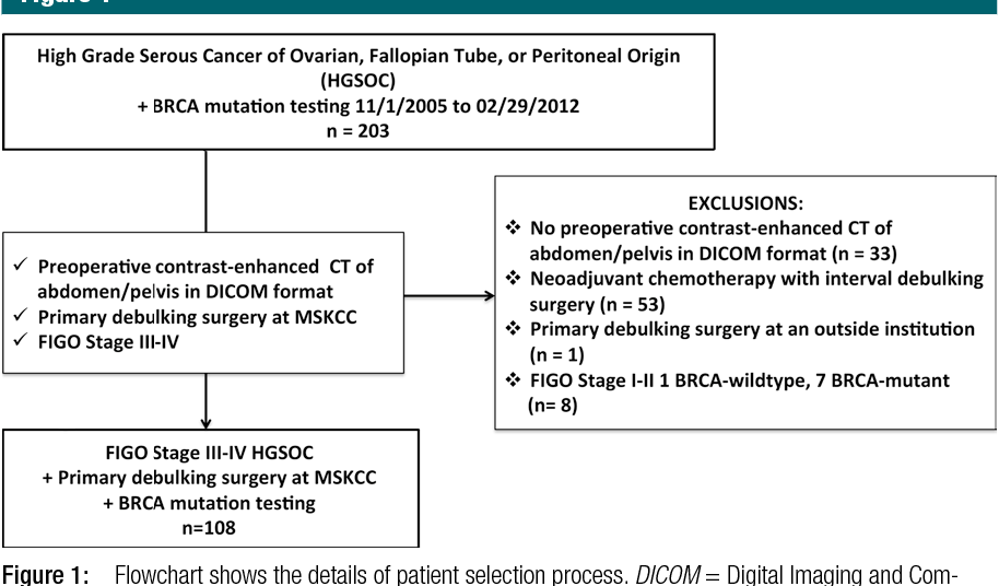 Figure 1 From High Grade Serous Ovarian Cancer Associations Between Brca Mutation Status Ct Imaging Phenotypes And Clinical Outcomes Semantic Scholar