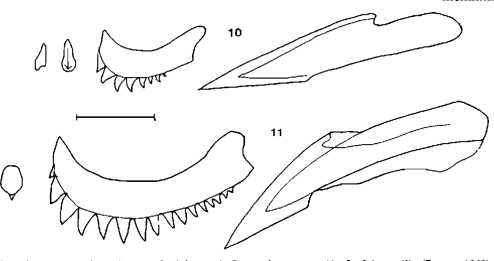 figure 10-11