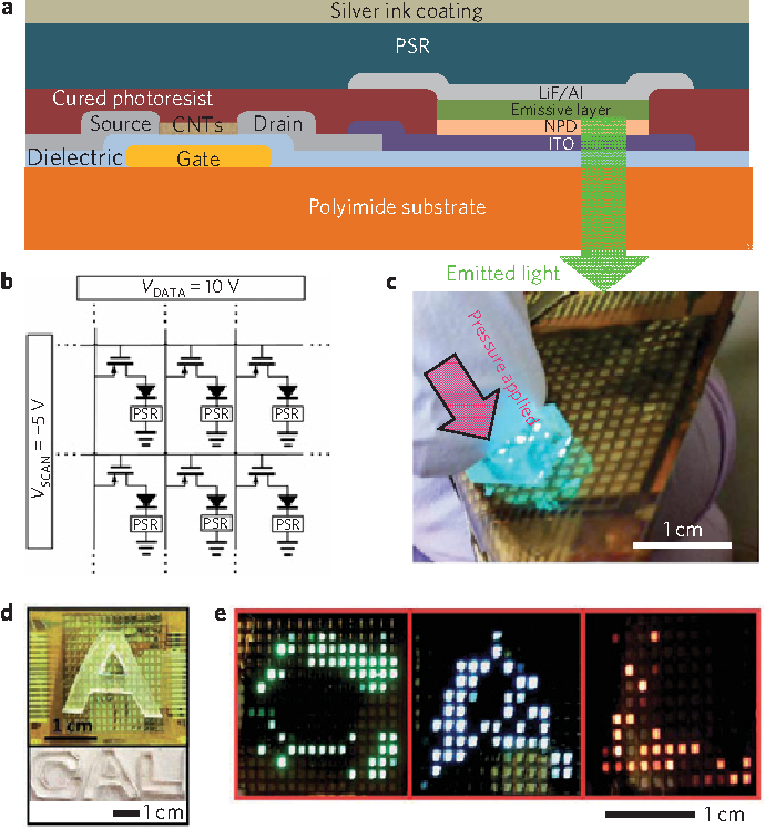 Figure 5 from User-interactive electronic skin for